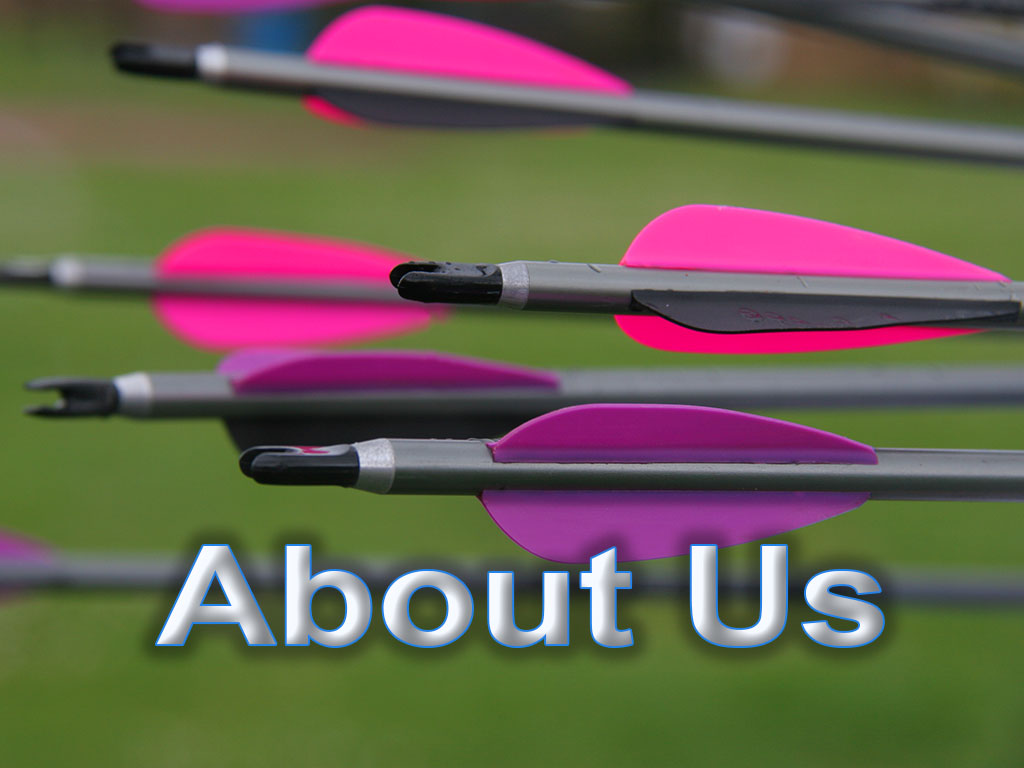 About the Bowmen of Danesfield Somerset Archery Club