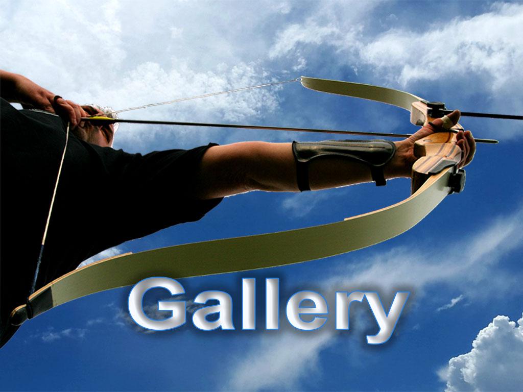Bowmen of Danesfield - Gallery